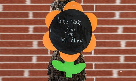 ace place out of school care